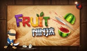 fruitninja530